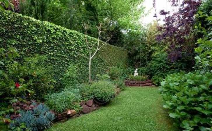 Como fazer um muro verde f rum da constru o for Tipos de muros verdes