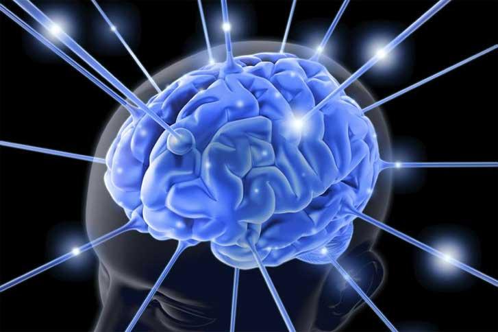 Para melhorar a mente, aprenda algo realmente novo | Fórum
